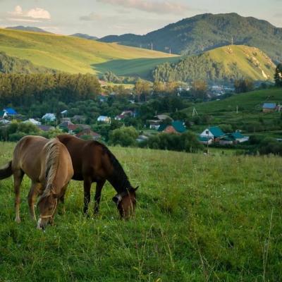 Золотое кольцо Алтая, Село Алтайское